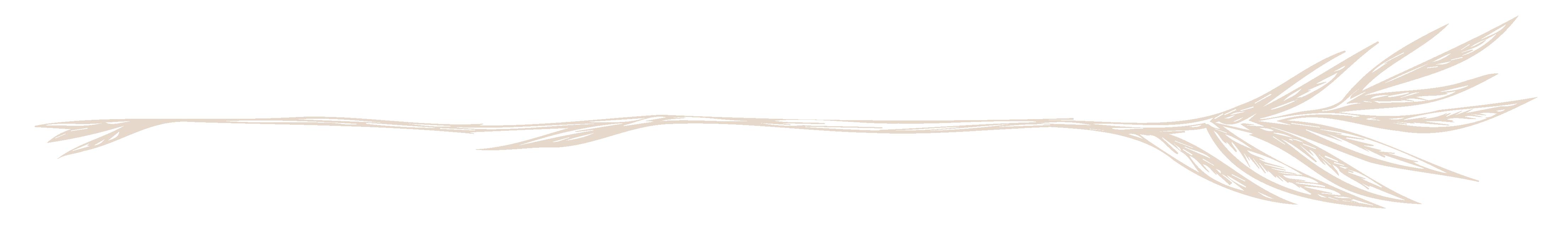 Pats Divider-03